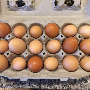 One Dozen Barnyard Eggs